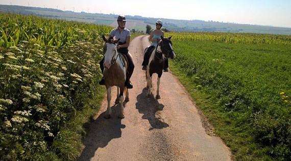 Balade à cheval Béthune, Lens